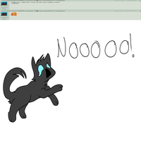 Ask crowfeather 1 by chlckadee
