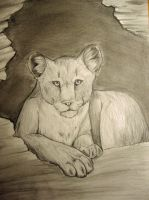 Lounging Cougar by Desaesed