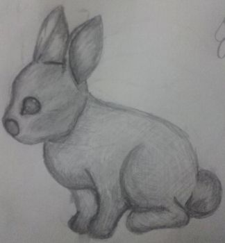 Bunny Rabit by OneAfterAnother