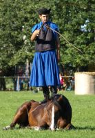 .:Horse-herder Competition23:. by Vihartancos