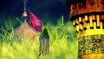 Imam Twelve-Imam of The Time-The Karbala by makanparsi