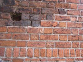 Bricks 02 by Caltha-stock