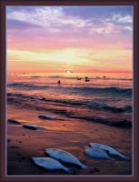 sunset-BalticSea 21 and fishes by Eikka