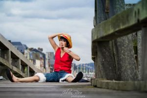 Monkey D.Luffy by Aki-Vega
