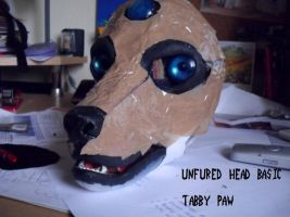 basic head unfured by TabbyPaw