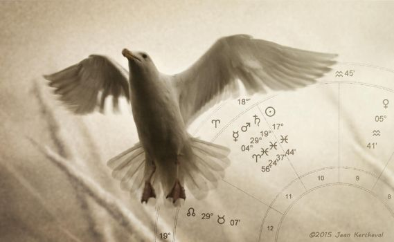 Pisces Gull by JtheQ