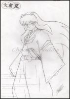 Inuyasha by TheChaoticShadow