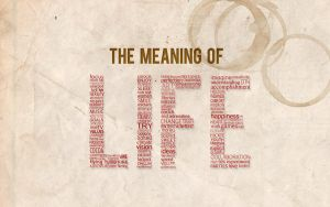 The meaning of life by KNL