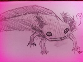 Little Pink Axolotl by wolf--eyes