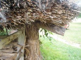 Thatched Roof Pigpen by NayaWhovian1016