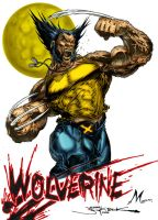 WOLVERINE by Mich974
