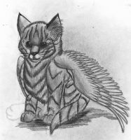 winged kitty by camychan