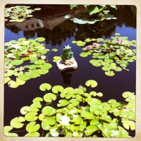Prince of the Pond by ZandyPop