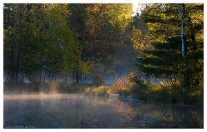 Northwoods Mist by leavenotrase