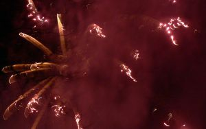 Fuzzy Fireworks 57 by RoyalScanners
