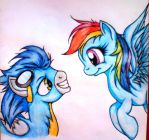 Dashie x Soarin by Tomek2289