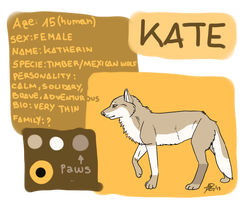 Kate reference sheet by TheDarkHyena