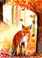 Autumns Solace by Luacia