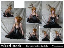 Raven Priestess Pack 13 by mizzd-stock