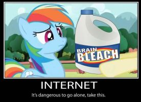 MLP Internet Demotivator by Talhos