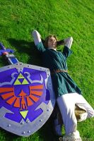 Taking A Break on Hyrule's Plains. by FallMoonlitRose