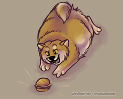 I can haz cheezbrgr? by bawky