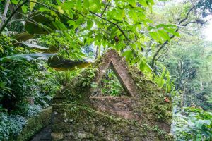 Jungle Triangle Stock by little-spacey
