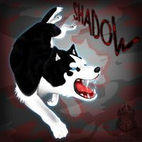 Shadow From Dead To Rights by wolfs-rain-amanda
