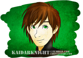 Hiccup by KaiDarknight