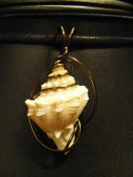 shell in bronze simple wrap by BacktoEarthCreations