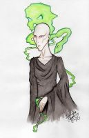 Lord Voldemort by SocialDeception