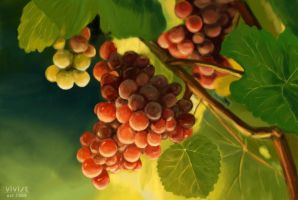 Grape vine by vivist