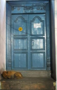 The Blue Door and the Sleeping Dog by Ptolemeia