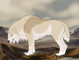 Tundra with saddle and accents by galianogangster