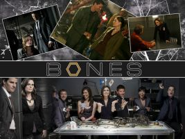 Bones Wall by Chastane