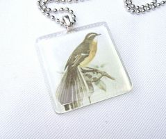 NZ fantail tile glass pendant by inchworm