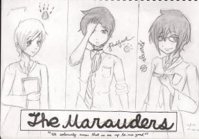 .:HP-The Marauders:. by ibitecandy