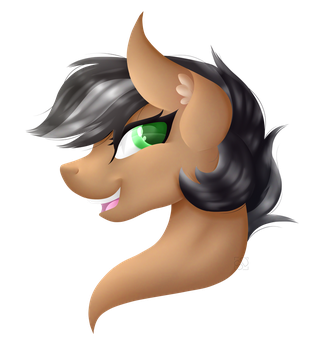 .:Re-Draw:. ArtSong Painted Bust by Amazing-ArtSong