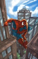 Spiderman Swinging by ErikVonLehmann