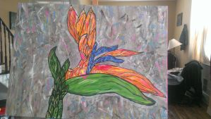 Bird of Paradise 1st Edition by MsWritten