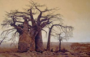 Baobab Trees by WillemSvdMerwe