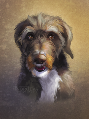 Rush - pet portrait by Nordeva