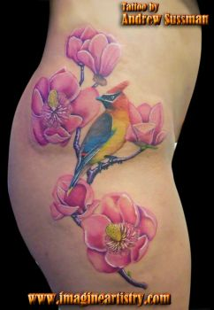 magnolias and bird by asussman