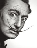 Salvador Dali by Don-Berry