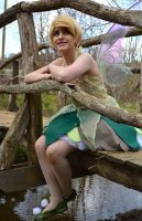 just around the river bend :tinker bell by Iris-Iridescence