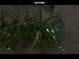 Biomass by Nameless-Designer