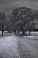 Spring Valley Road by garts1966