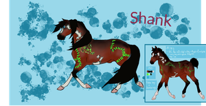 NGS Shank 587 - Free Breeding - Ref by fionafox1234