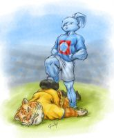CRUZ AZUL vs Tigres by gazap