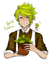 Herb Cookie by Sleepy-Nature